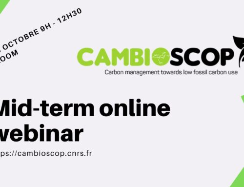 Cambioscop mid-term seminar – videos and materials